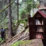 Горска библиотека в Родопите привлича децата към четенето