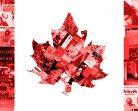 Канадците четат все повече книги от местни автори
