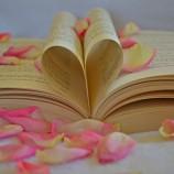 Сара Маклийн за стигмата на любовните романи