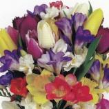 """На кого какви цветя да подарим и при какви поводи (Из """"Да подарим цветя"""" от Габриела де Лука)"""