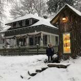 Вижте как едно 110-годишно дърво се превръща в приказна квартална библиотека [галерия]
