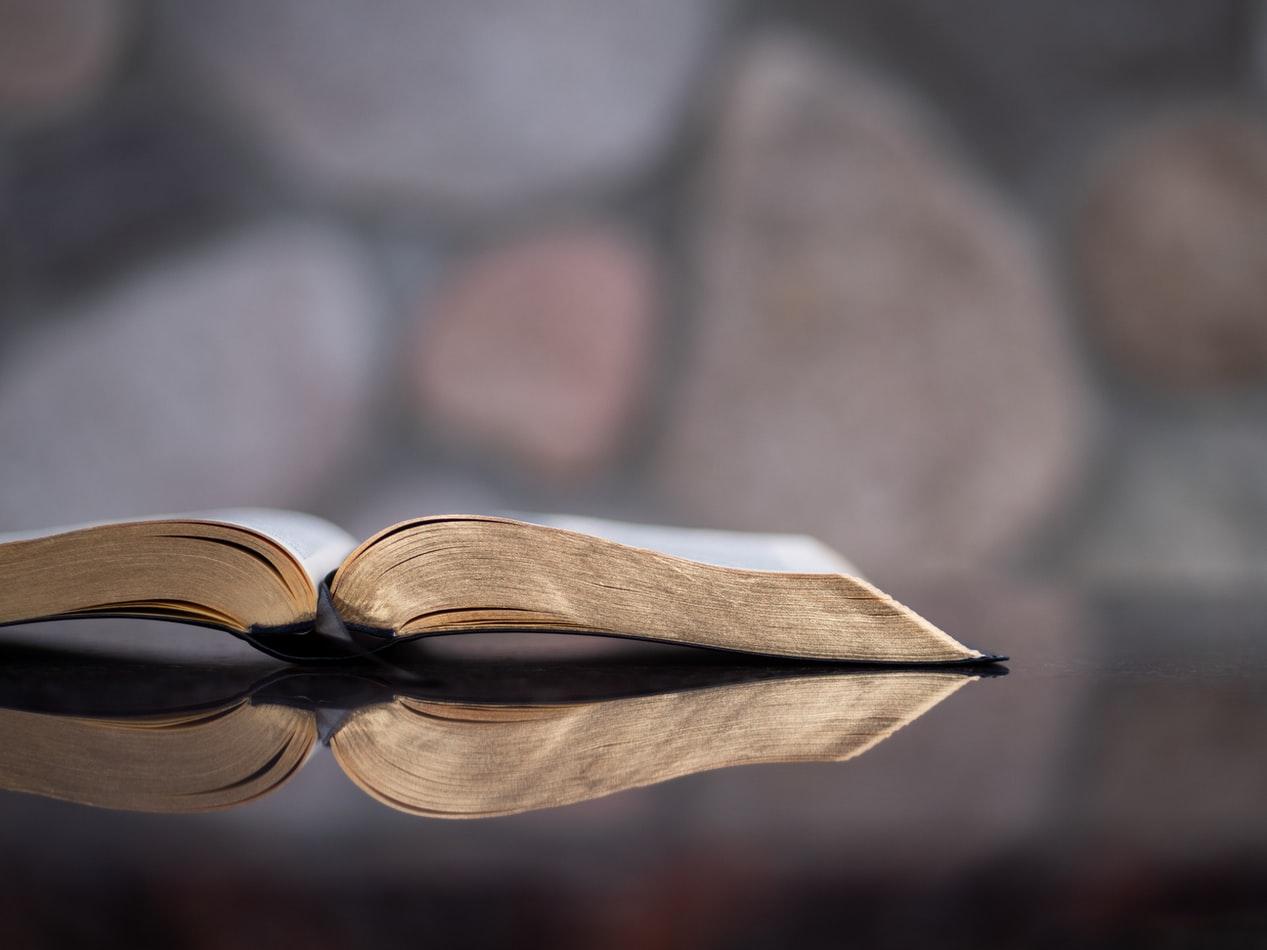"""Семинар """"Библейски сказания: Целувката като оръжие"""""""