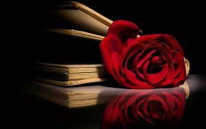 дни на любовта